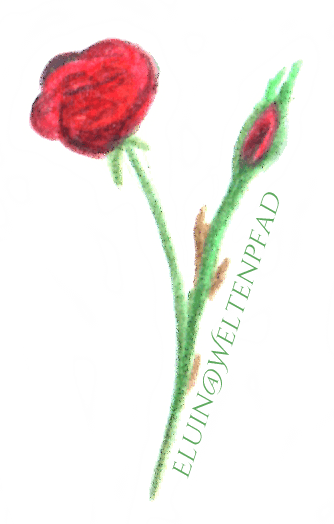 Wir malen die Rosen rot