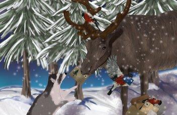 weihnachtspost2085971713.jpg